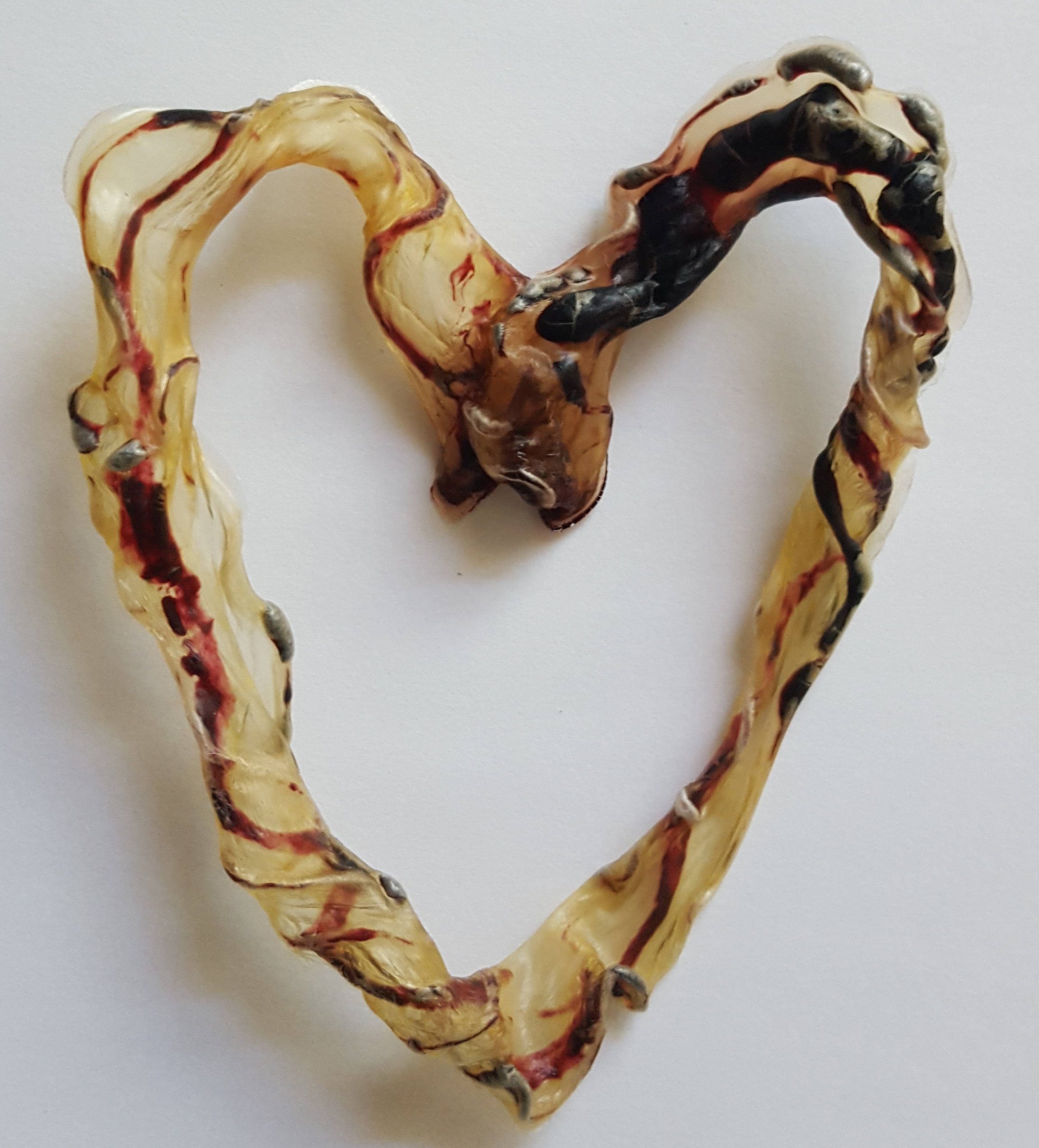 Umbilical Cord Keepsake Heart
